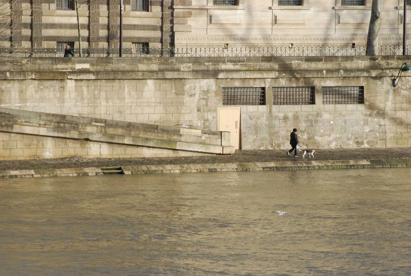 Solitudini cittadine - Urban solitudes